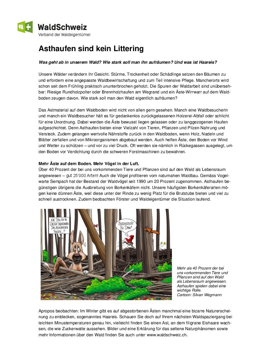 Info Asthaufen im Wald
